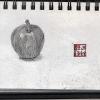 A Bite of an Apple